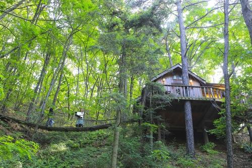 [여기 어때] 허클베리 핀의 꿈…피톤치드 가득한 트리하우스