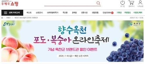 코로나19 타격 농가 돕자 옥천 포도·복숭아 온라인 축제