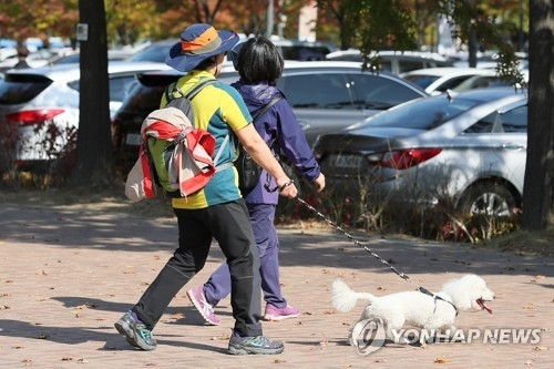 A citizen takes her dog for a walk at World Cup Park in western Seoul on Oct. 22, 2017. (Yonhap)