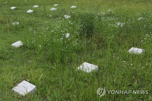 Red Cross offers to take care of cemetery for N.K. soldiers
