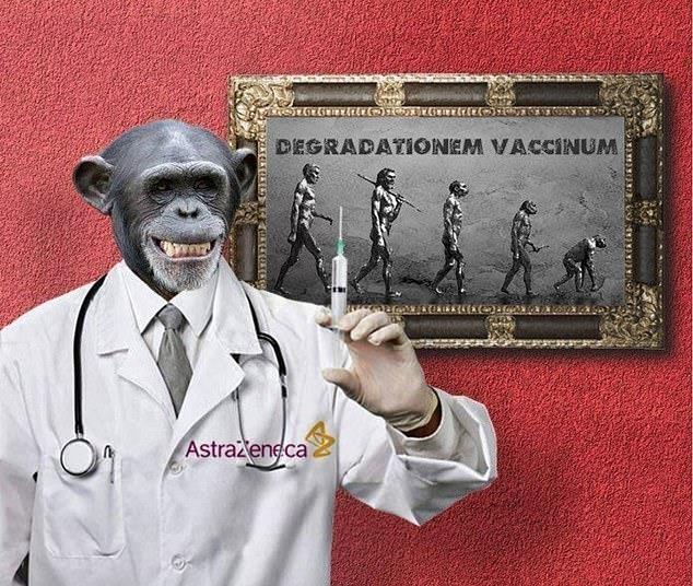 백신을 접종하면 침팬지가 된다고 주장한 러시아 홍보업체발 허위정보[소셜미디어 캡처, DB 및 재판매 금지]