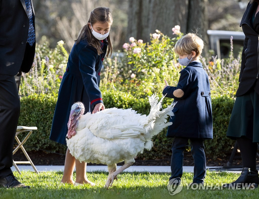 USA TRUMP TURKEY PARDONING