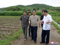 N. Korean official checks typhoon-hit southwestern region