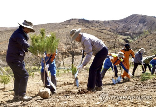 President Moon plants tree on Arbor Day