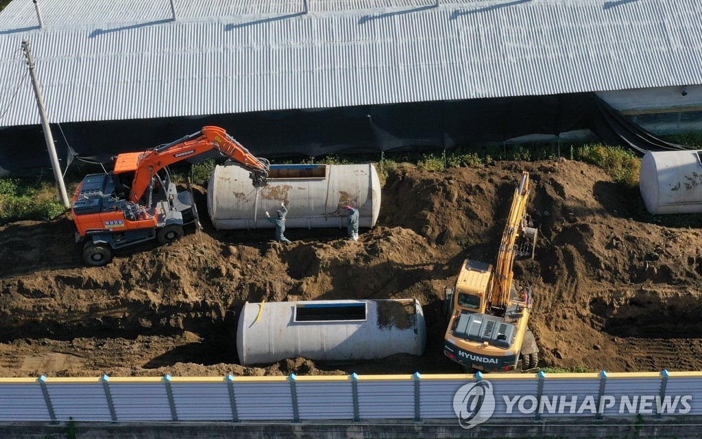 This photo taken on Oct. 9, 2020, shows quarantine workers burying culled pigs near a hog farm in Hwacheon, 120 kilometers east of Seoul, after an outbreak of African swine fever was reported in the region for the first time since October 2019. (Yonhap)